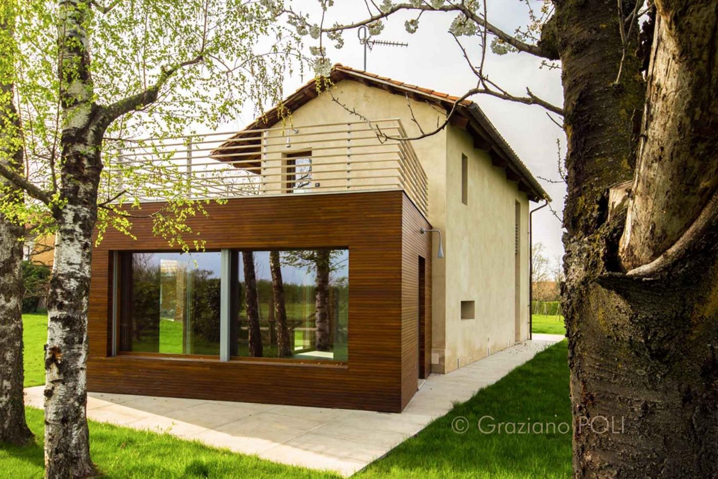 Formiche del legno risolvi il problema con eurogreen - Invasione formiche in casa ...